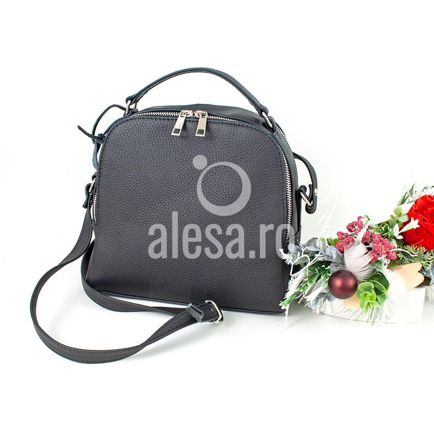 geanta de zi alesa.ro